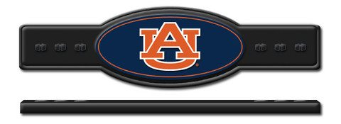 Auburn Tigers Cue Stick Holder